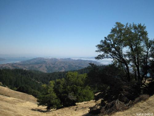 Mt. Tam, CA